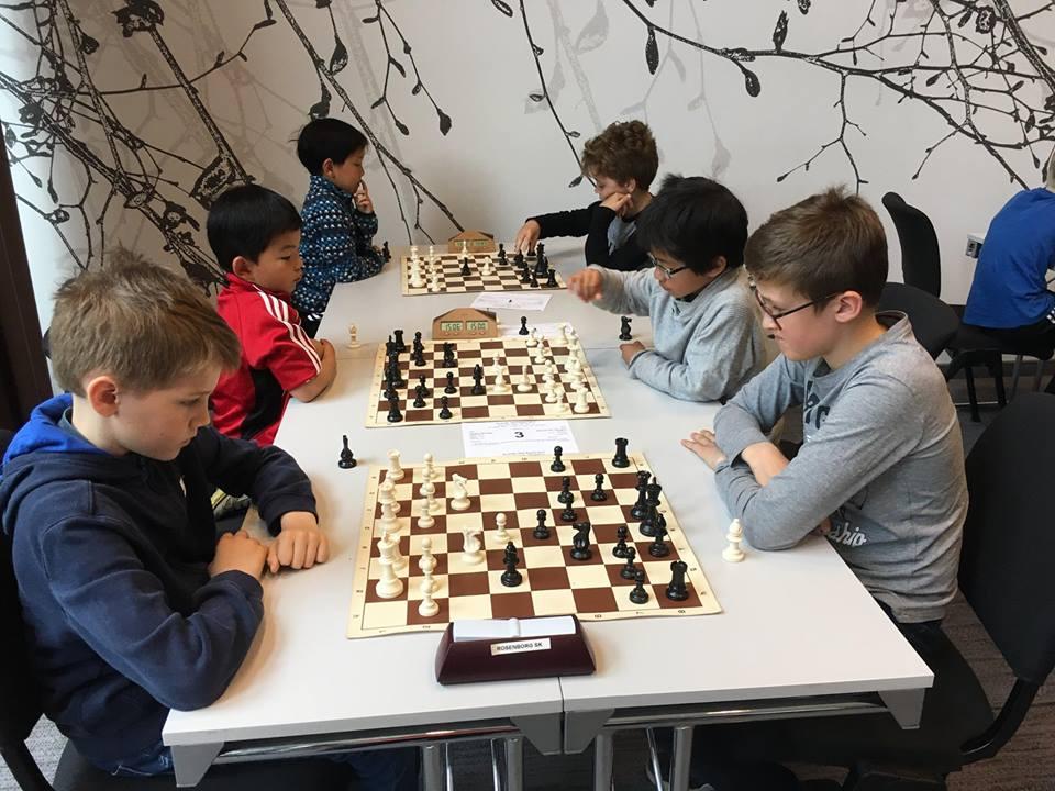 Spille sjakk i Trondheim - barn, ungdom og voksne.