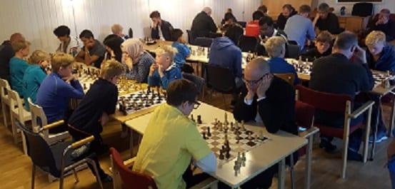 Spille sjakk Trondheim, hvordan spille sjakk, sjakkturnering, sjakkurs, sjakktrening, barnesjakk