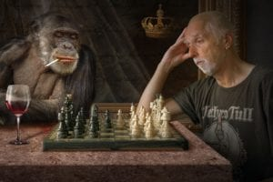 Sjakk for voksne i Trondheim