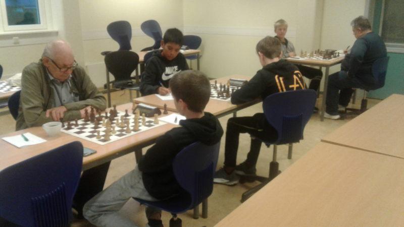 Sjakktilbud med klubbsjakk og sjakkakademi i Trondheim og Stjørdal